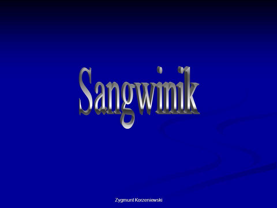 Zygmunt Korzeniewski Bezpiecznym połączeniem jest również kombinacja sangwinika z flegmatykiem.
