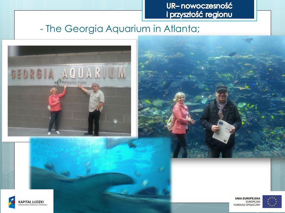 - The Georgia Aquarium in Atlanta;