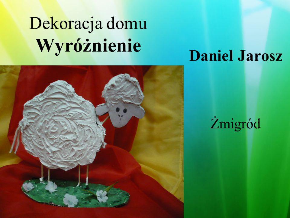 Dekoracja domu Wyróżnienie Grzegorz Bielak Wojcieszów