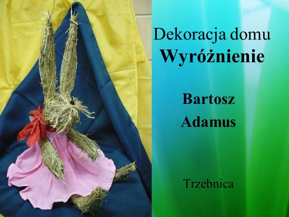 Dekoracja domu Wyróżnienie Wioletta Kotarska ZSS Nr27 Wrocław