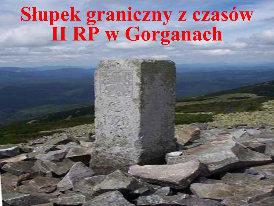 Słupek graniczny z czasów II RP w Gorganach