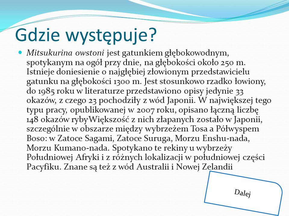 Gdzie występuje? Mitsukurina owstoni jest gatunkiem głębokowodnym, spotykanym na ogół przy dnie, na głębokości około 250 m. Istnieje doniesienie o naj