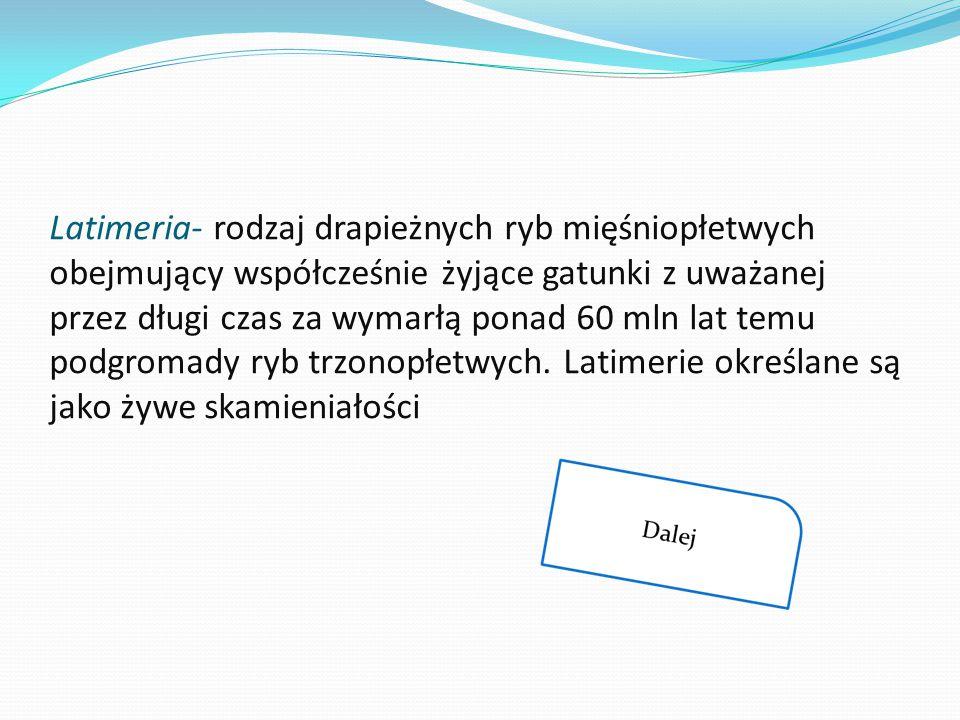 Latimeria- rodzaj drapieżnych ryb mięśniopłetwych obejmujący współcześnie żyjące gatunki z uważanej przez długi czas za wymarłą ponad 60 mln lat temu