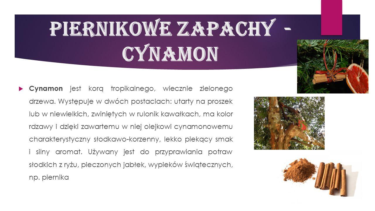 Piernikowe zapachy - cynamon  Cynamon jest korą tropikalnego, wiecznie zielonego drzewa. Występuje w dwóch postaciach: utarty na proszek lub w niewie