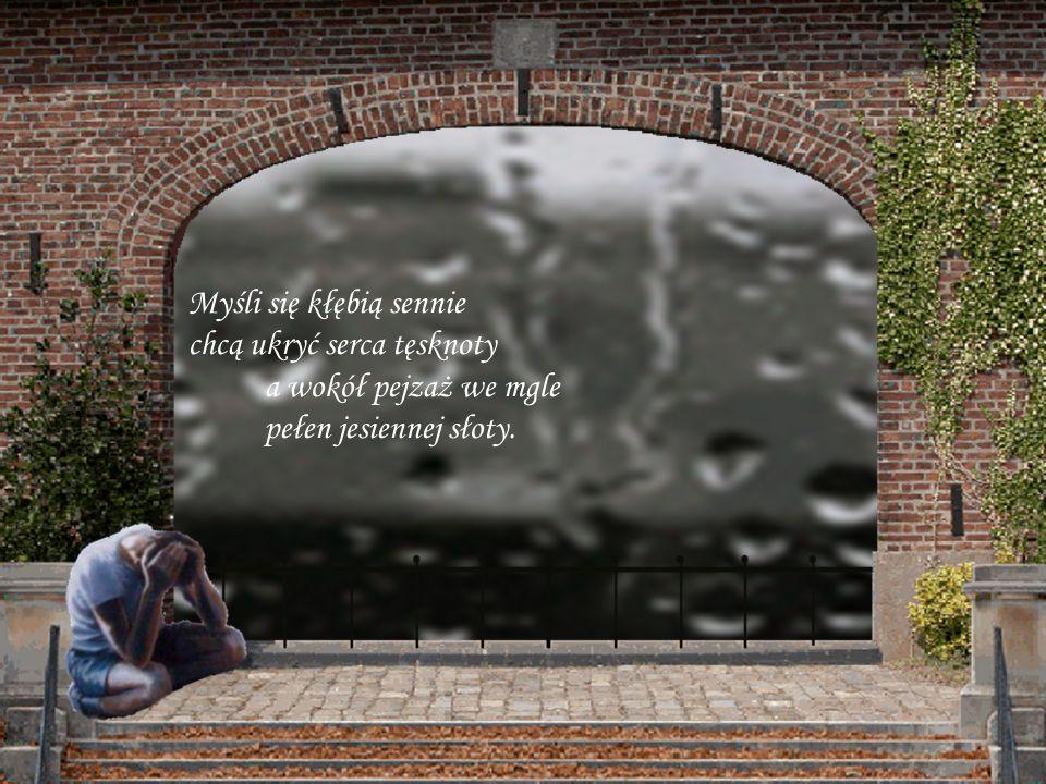 Cisza, słychać jak padają łzy gdy smutek się wita z radością gdy nadzieja rozwiewa się w mgle i razem odchodzi z miłością.