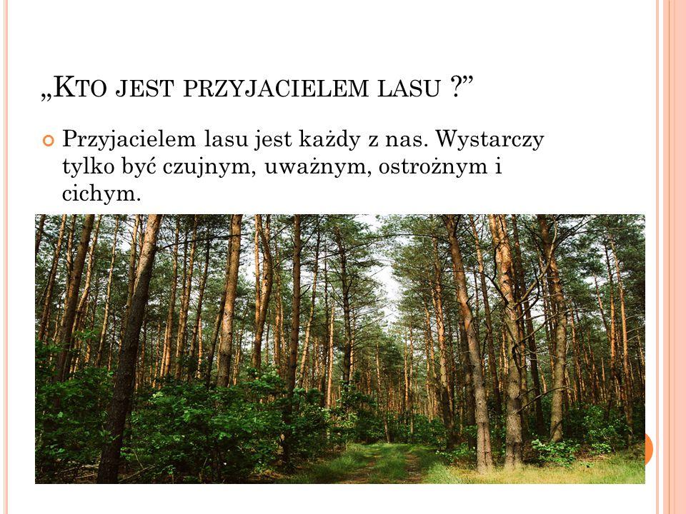 L AS JEST DOMEM ZWIERZĄT Każdy człowiek powinien pamiętać o tym, że las jest mieszkaniem wielu gatunków zwierząt Przyjaciel lasu troszczy się o zwierzęta w nim żyjące