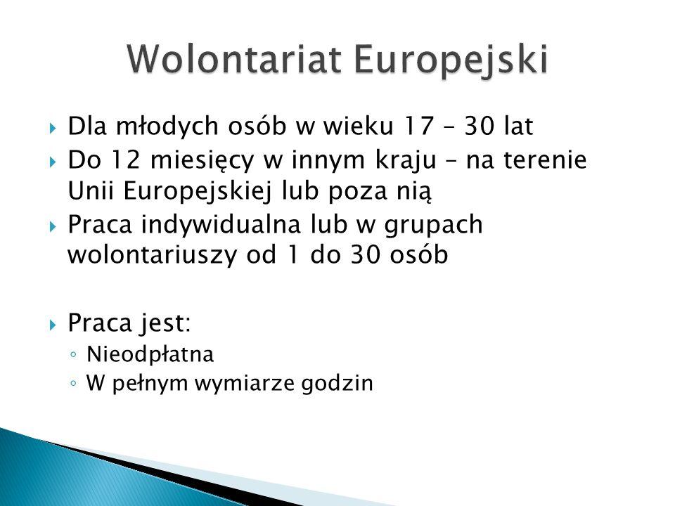  Dla młodych osób w wieku 17 – 30 lat  Do 12 miesięcy w innym kraju – na terenie Unii Europejskiej lub poza nią  Praca indywidualna lub w grupach w