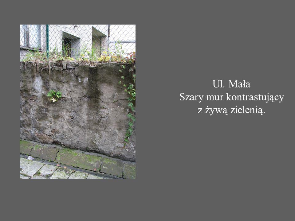 Ul. Mała Szary mur kontrastujący z żywą zielenią.