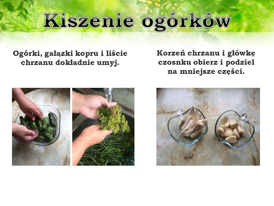 Ogórki, gałązki kopru i liście chrzanu dokładnie umyj. Korzeń chrzanu i główkę czosnku obierz i podziel na mniejsze części.