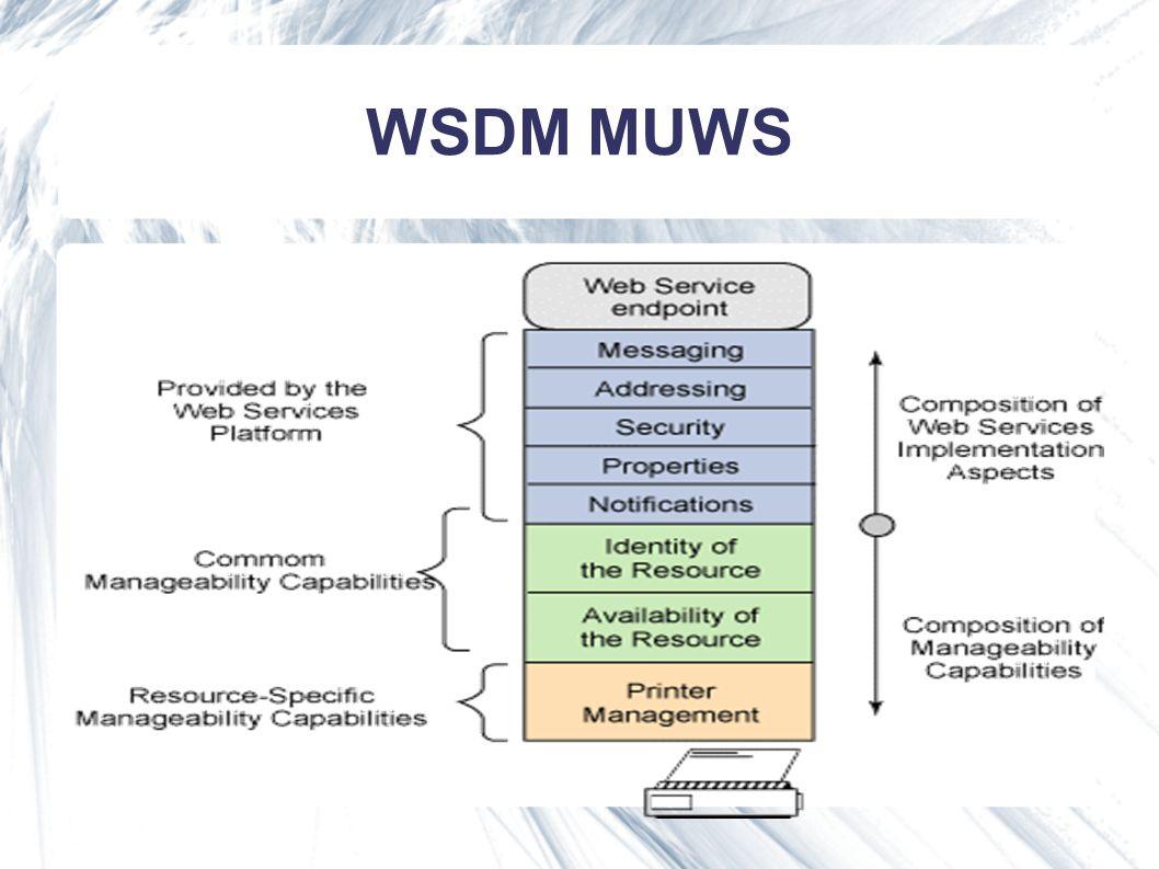 WSDM MUWS