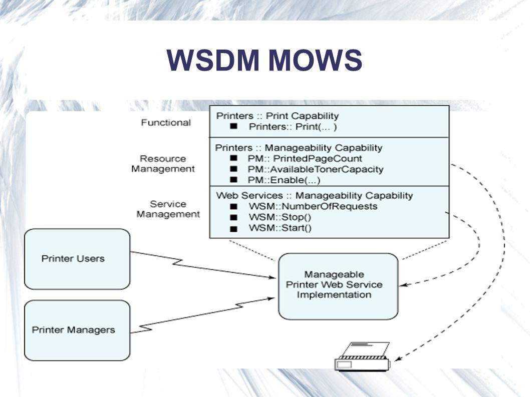 WSDM MOWS