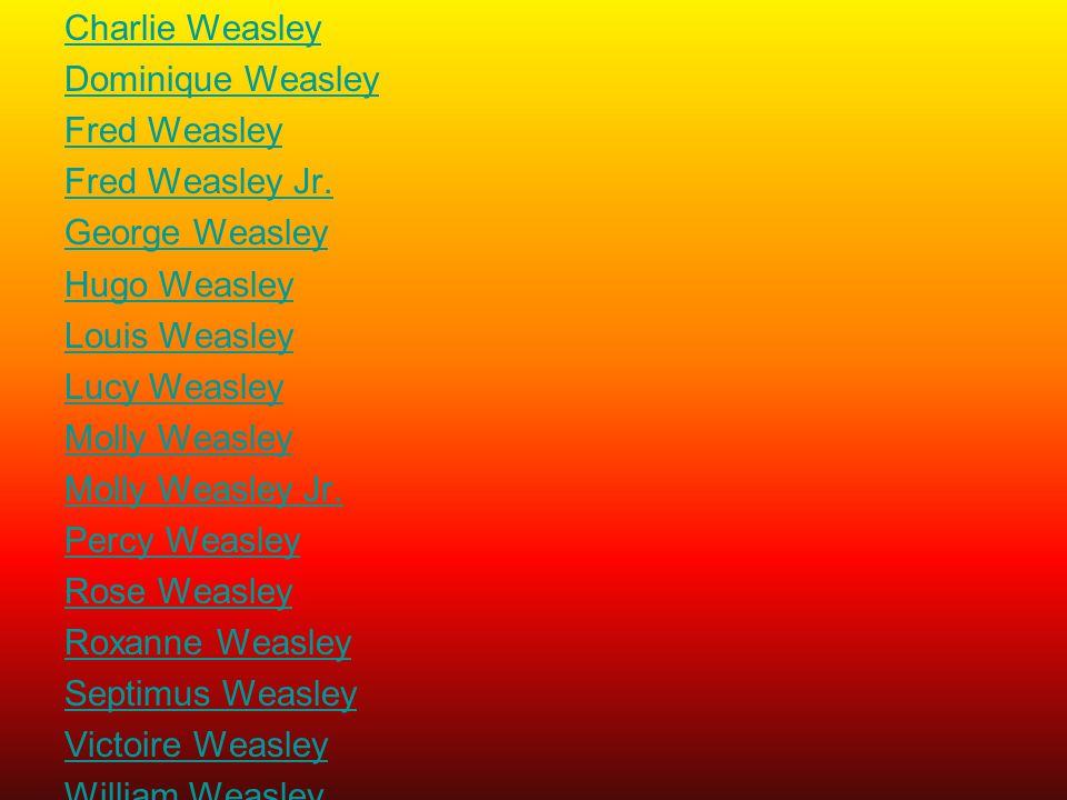 Charlie Weasley Dominique Weasley Fred Weasley Fred Weasley Jr. George Weasley Hugo Weasley Louis Weasley Lucy Weasley Molly Weasley Molly Weasley Jr.