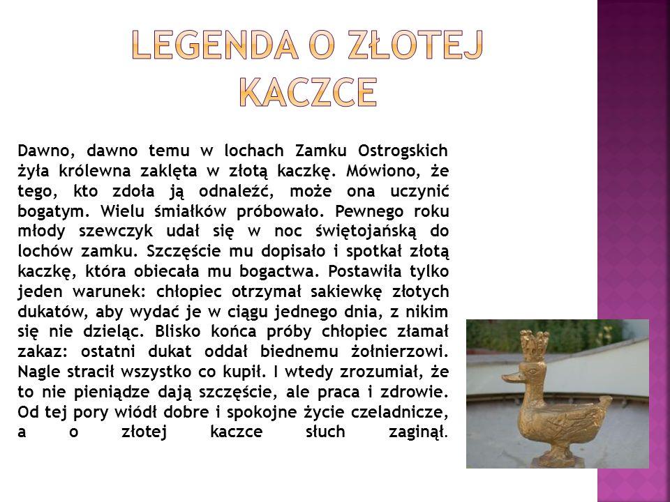 W piwnicach jednej z kamienic na Starym Mieście mieszkał stwór nazywany Bazyliszkiem.