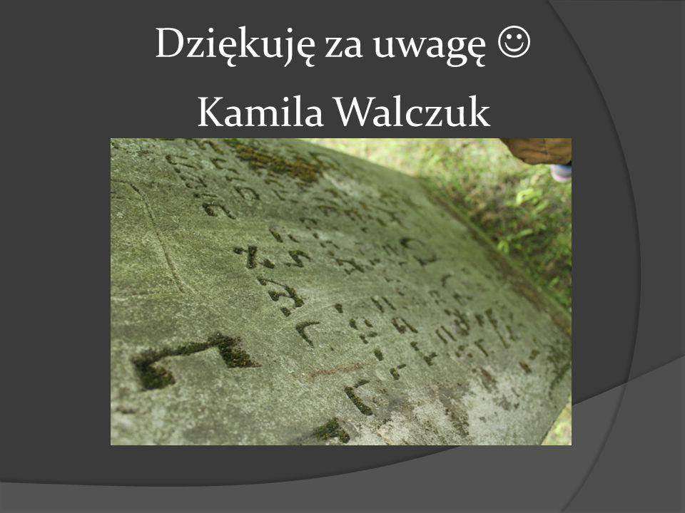 Dziękuję za uwagę Kamila Walczuk
