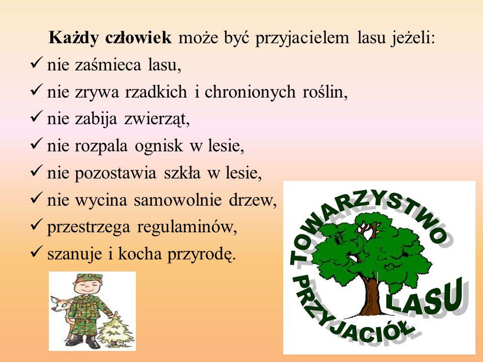 Każdy człowiek może być przyjacielem lasu jeżeli: nie zaśmieca lasu, nie zrywa rzadkich i chronionych roślin, nie zabija zwierząt, nie rozpala ognisk w lesie, nie pozostawia szkła w lesie, nie wycina samowolnie drzew, przestrzega regulaminów, szanuje i kocha przyrodę.