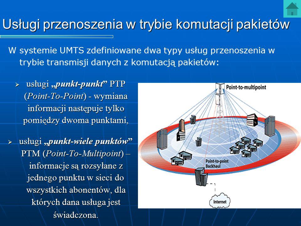 """Usługi przenoszenia w trybie komutacji pakietów  usługi """"punkt-punkt"""" PTP (Point-To-Point) - wymiana informacji następuje tylko pomiędzy dwoma punkta"""