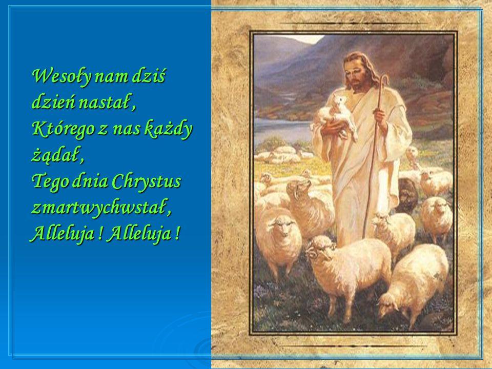 Chryste Boże, naucz nas wielbić Twe Zmartwychwstanie.