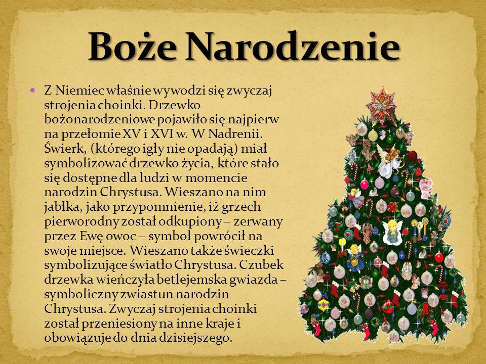 Z Niemiec właśnie wywodzi się zwyczaj strojenia choinki. Drzewko bożonarodzeniowe pojawiło się najpierw na przełomie XV i XVI w. W Nadrenii. Świerk, (