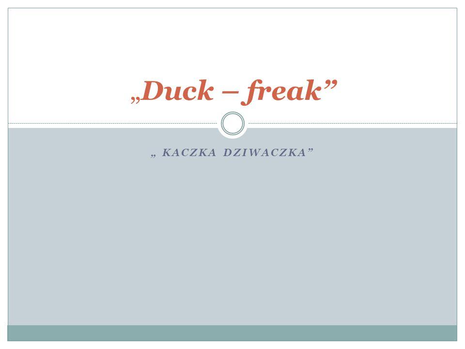 """"""" KACZKA DZIWACZKA """"Duck – freak"""