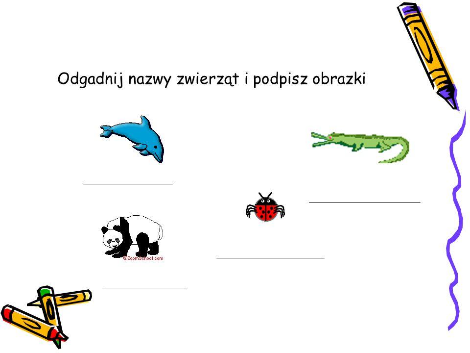 Utrwalenie litery D, d Ćwiczenia w pisaniu i czytaniu litery D, d Dorota Dąbrowska