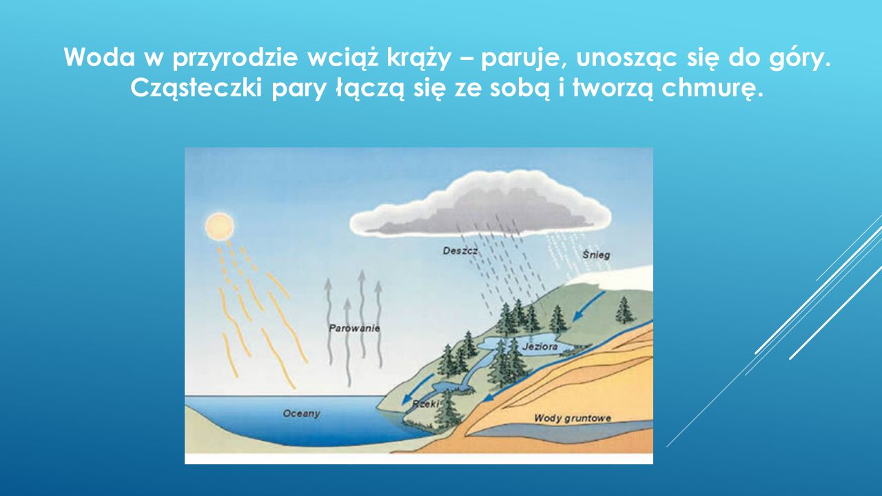 Woda w przyrodzie wciąż krąży – paruje, unosząc się do góry. Cząsteczki pary łączą się ze sobą i tworzą chmurę.