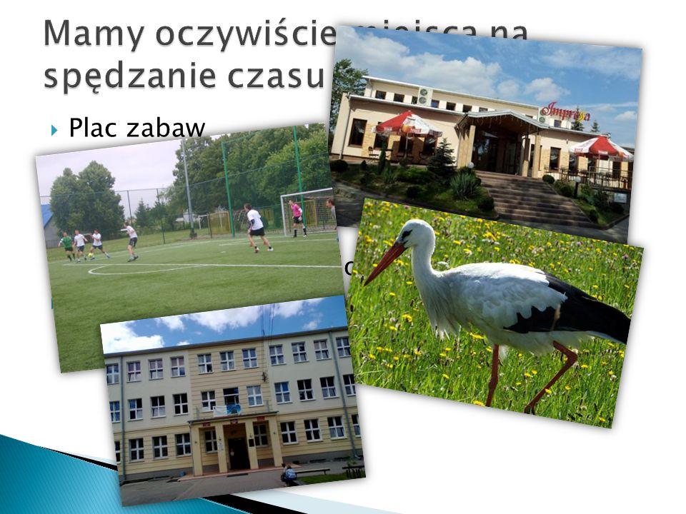  Plac zabaw  Restauracje  Park  Orlik  Boisko ( w trakcie budowy)  I wiele innych