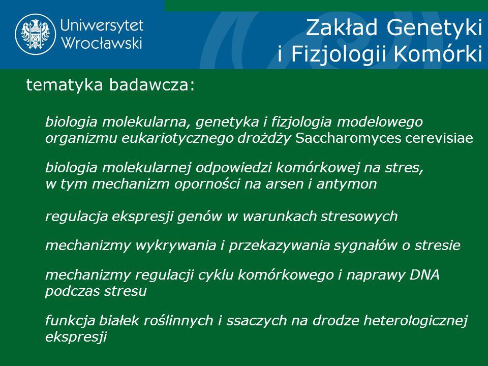 Zakład Genetyki i Fizjologii Komórki tematyka badawcza: biologia molekularna, genetyka i fizjologia modelowego organizmu eukariotycznego drożdży Sacch