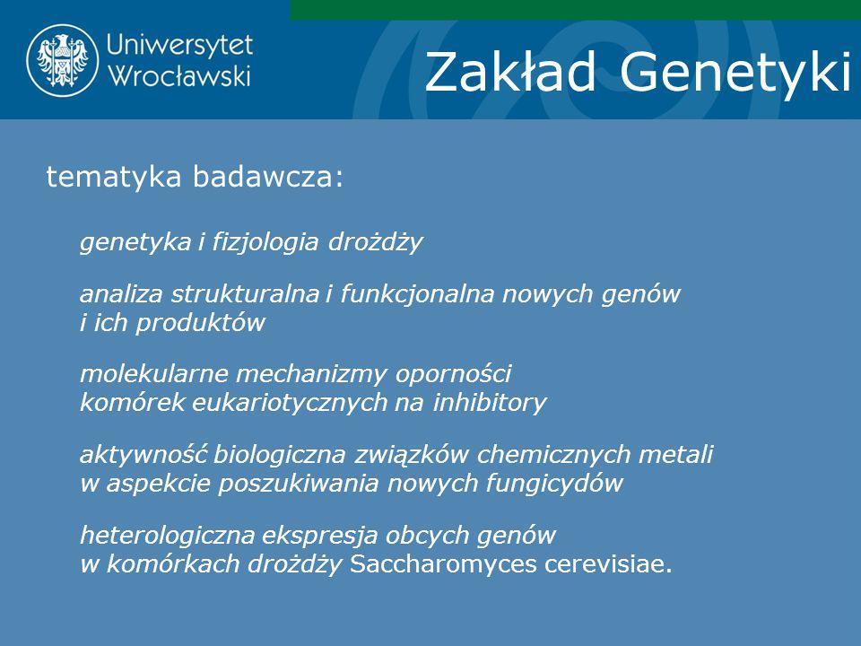 Zakład Genetyki tematyka badawcza: genetyka i fizjologia drożdży analiza strukturalna i funkcjonalna nowych genów i ich produktów molekularne mechaniz