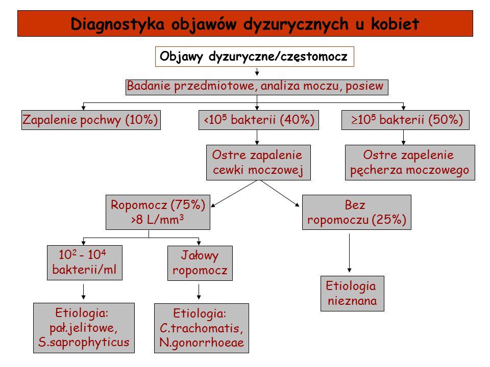 Diagnostyka objawów dyzurycznych u kobiet Objawy dyzuryczne/częstomocz Badanie przedmiotowe, analiza moczu, posiew Zapalenie pochwy (10%)<10 5 bakteri