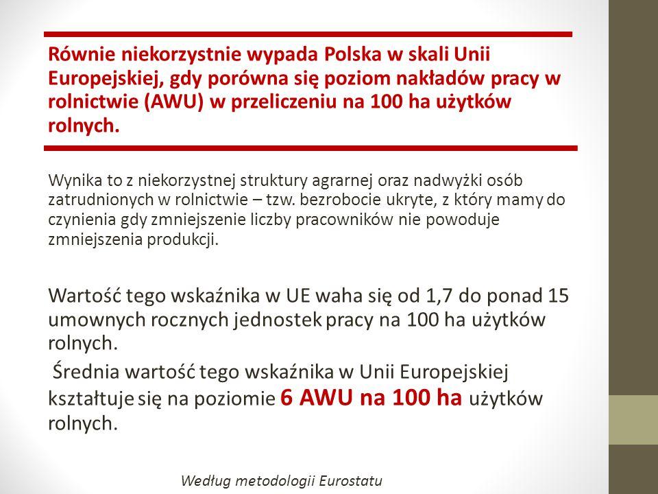 Równie niekorzystnie wypada Polska w skali Unii Europejskiej, gdy porówna się poziom nakładów pracy w rolnictwie (AWU) w przeliczeniu na 100 ha użytkó