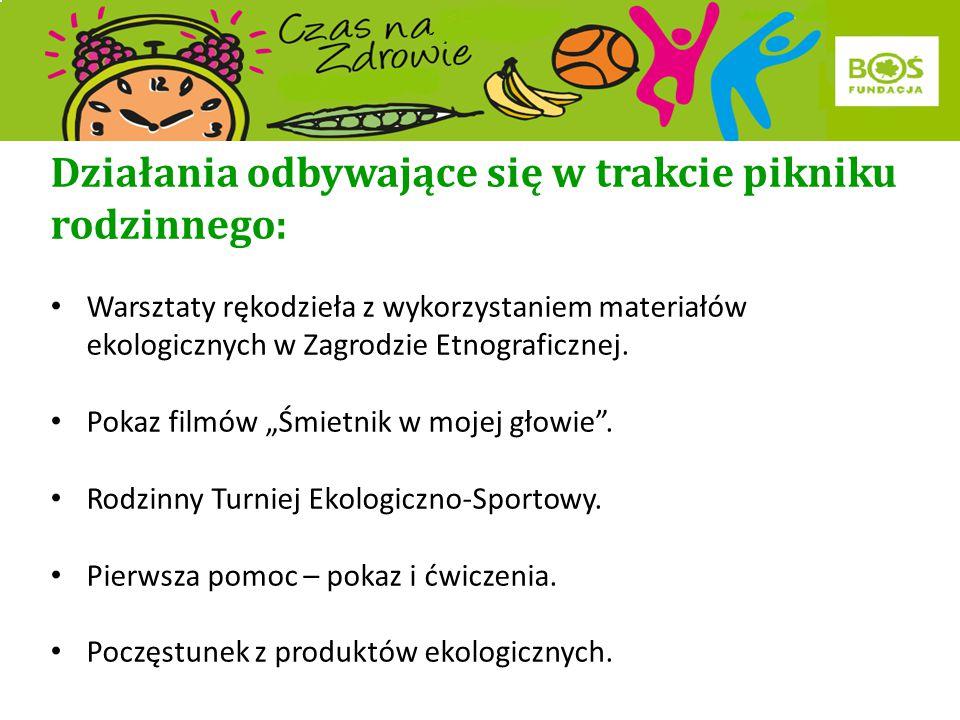 Podjęte działania: Wycieczka uczniów SP w Rogach wraz z uczniami z Osikova do Soliny - zwiedzanie Oddziału Zespołu Elektrowni Wodnych.
