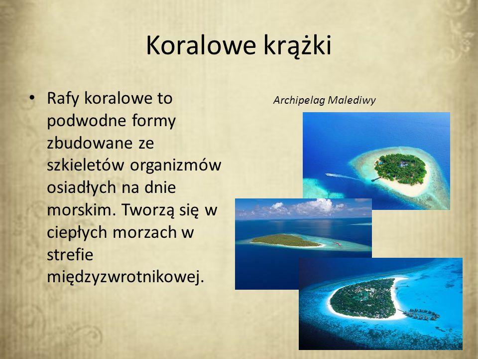 Koralowe krążki Rafy koralowe to podwodne formy zbudowane ze szkieletów organizmów osiadłych na dnie morskim. Tworzą się w ciepłych morzach w strefie