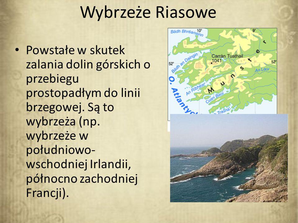 Wybrzeże Riasowe Powstałe w skutek zalania dolin górskich o przebiegu prostopadłym do linii brzegowej. Są to wybrzeża (np. wybrzeże w południowo- wsch