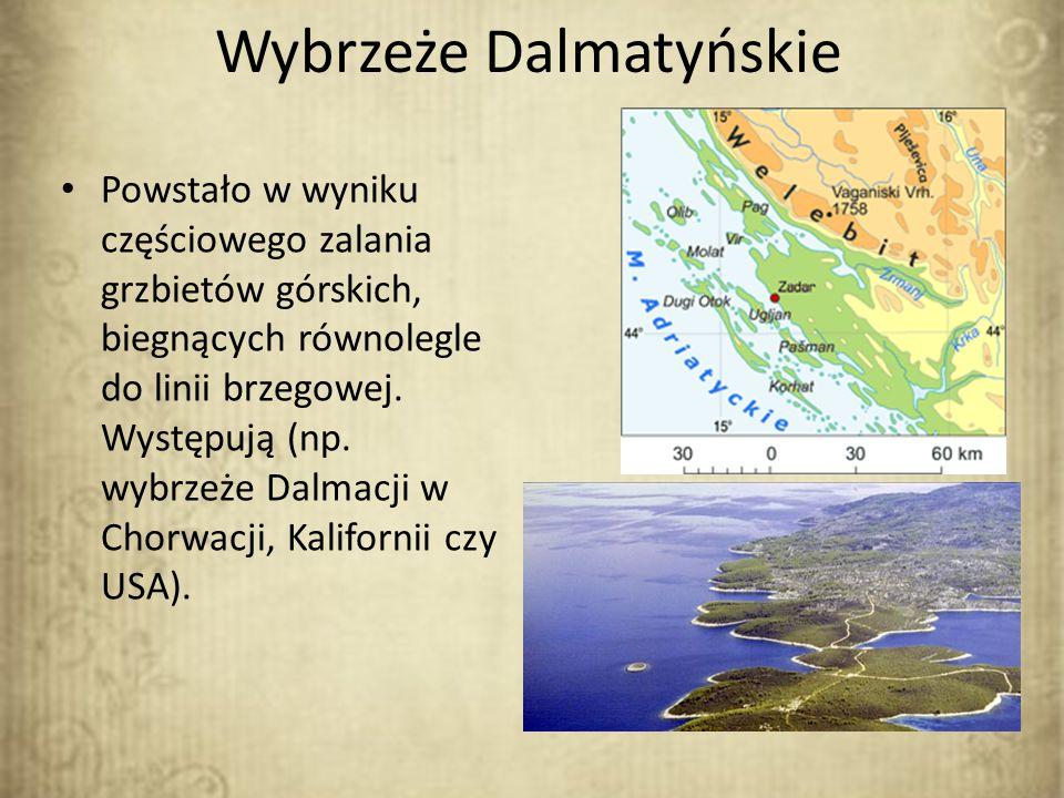Wybrzeże Dalmatyńskie Powstało w wyniku częściowego zalania grzbietów górskich, biegnących równolegle do linii brzegowej. Występują (np. wybrzeże Dalm