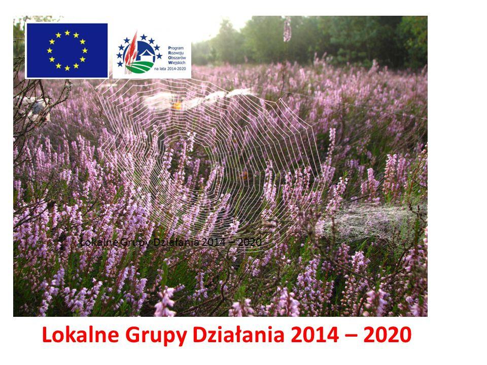 Lokalne Grupy Działania 2014 – 2020
