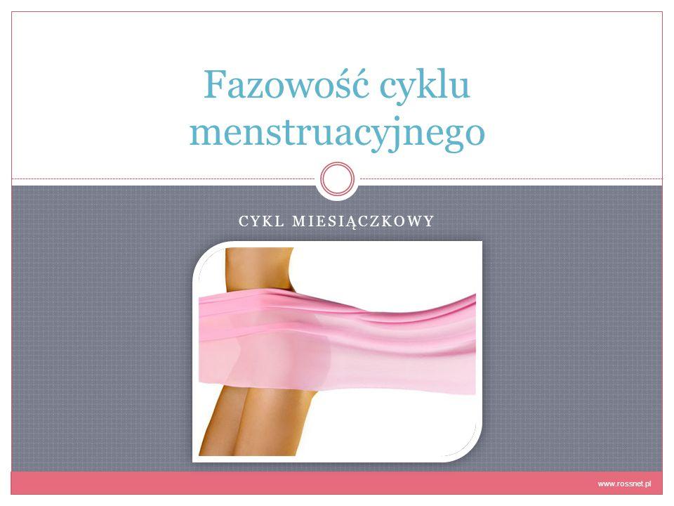 CYKL MIESIĄCZKOWY Fazowość cyklu menstruacyjnego www.rossnet.pl