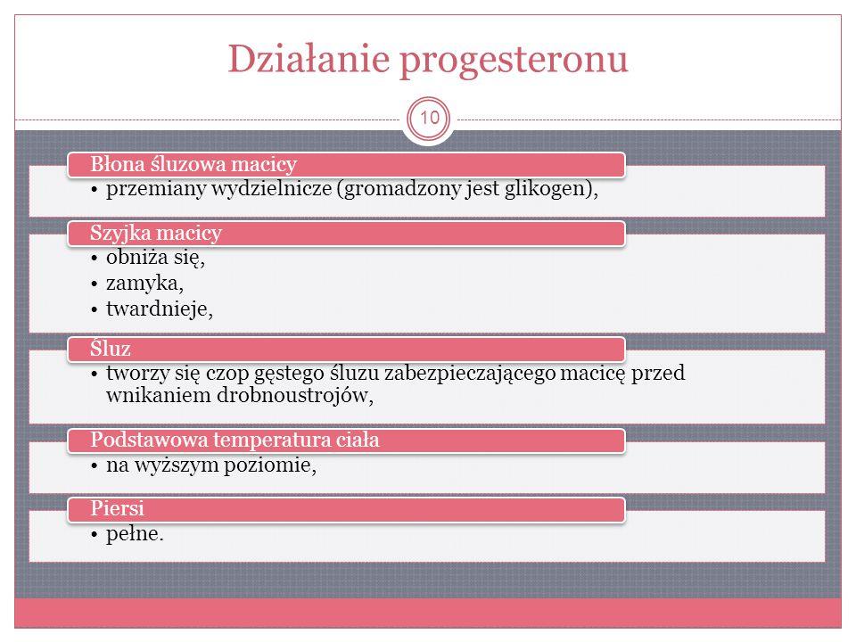 Działanie progesteronu 10 przemiany wydzielnicze (gromadzony jest glikogen), Błona śluzowa macicy obniża się, zamyka, twardnieje, Szyjka macicy tworzy