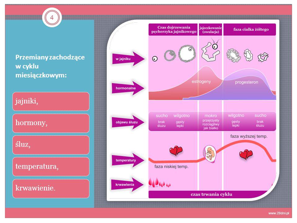 Koniec 15 www.demotywatory.pl