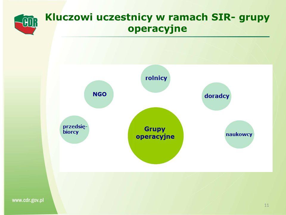 Kluczowi uczestnicy w ramach SIR- grupy operacyjne 11