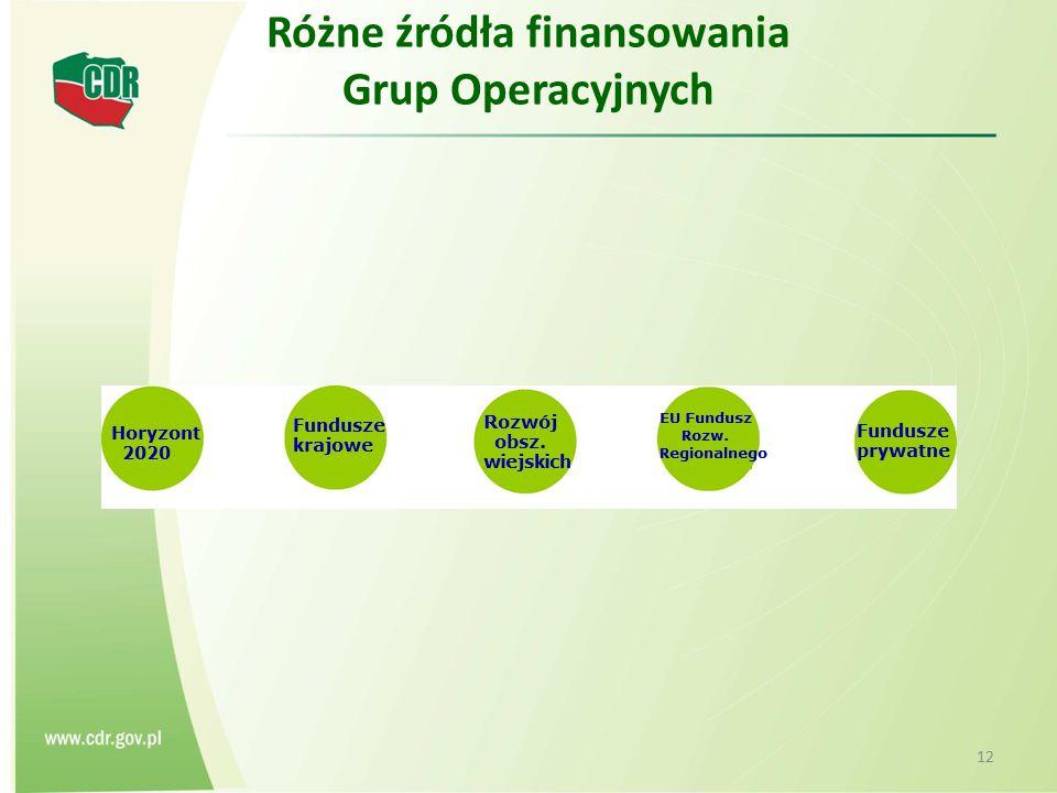 Różne źródła finansowania Grup Operacyjnych 12
