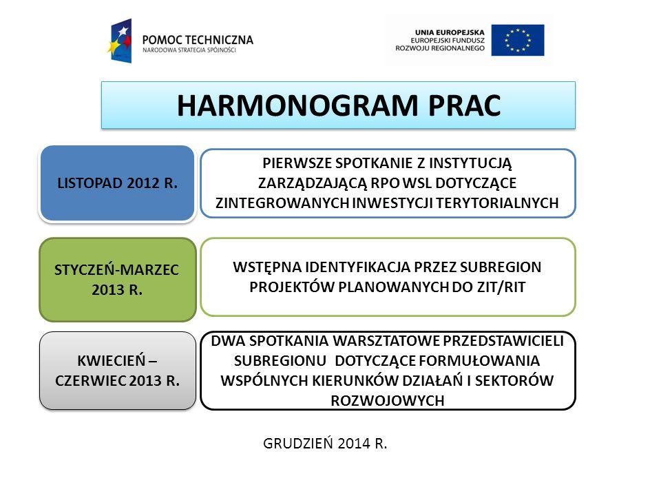 HARMONOGRAM PRAC GRUDZIEŃ 2014 R. LISTOPAD 2012 R. STYCZEŃ-MARZEC 2013 R. KWIECIEŃ – CZERWIEC 2013 R. PIERWSZE SPOTKANIE Z INSTYTUCJĄ ZARZĄDZAJĄCĄ RPO