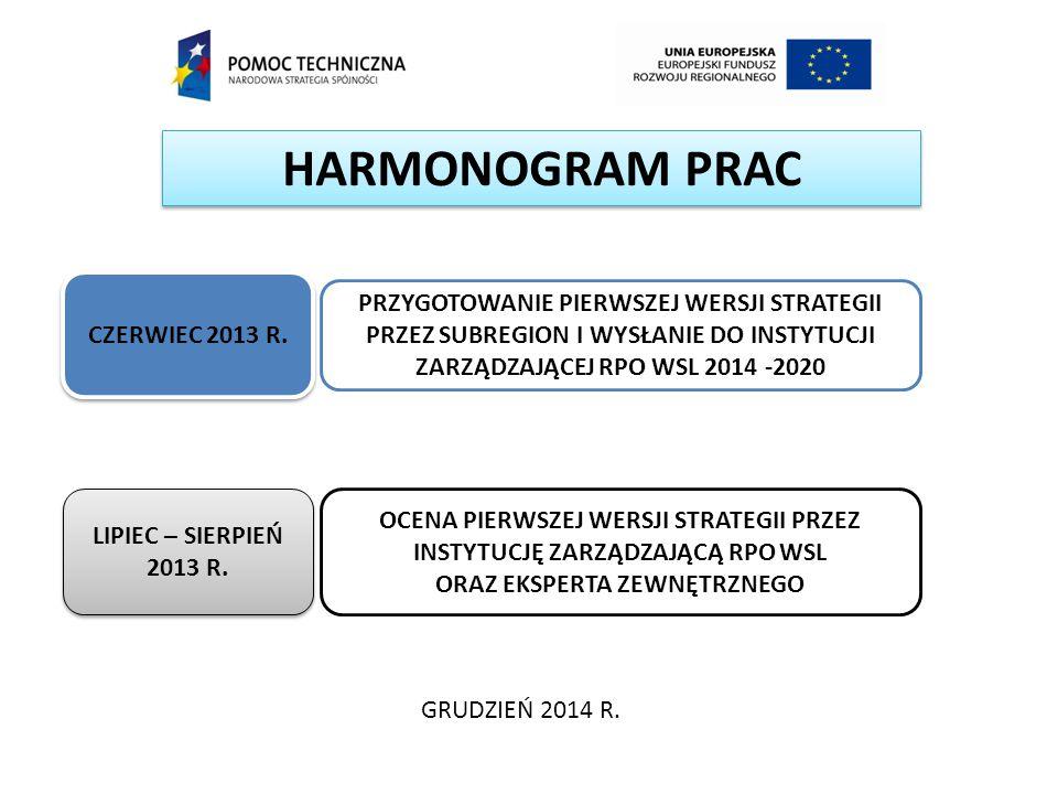 HARMONOGRAM PRAC GRUDZIEŃ 2014 R. CZERWIEC 2013 R. LIPIEC – SIERPIEŃ 2013 R. PRZYGOTOWANIE PIERWSZEJ WERSJI STRATEGII PRZEZ SUBREGION I WYSŁANIE DO IN