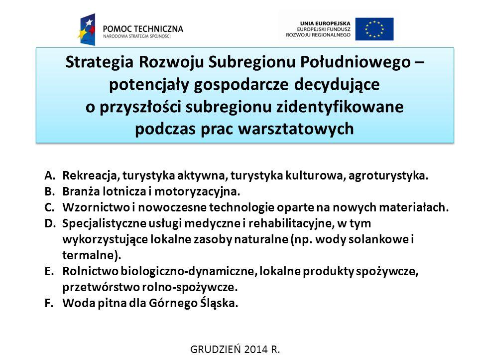 Strategia Rozwoju Subregionu Południowego – potencjały gospodarcze decydujące o przyszłości subregionu zidentyfikowane podczas prac warsztatowych GRUD
