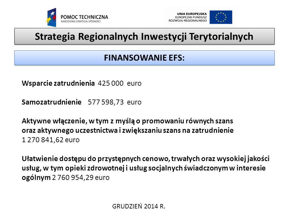 Strategia Regionalnych Inwestycji Terytorialnych GRUDZIEŃ 2014 R. FINANSOWANIE EFS: Wsparcie zatrudnienia 425 000 euro Samozatrudnienie 577 598,73 eur