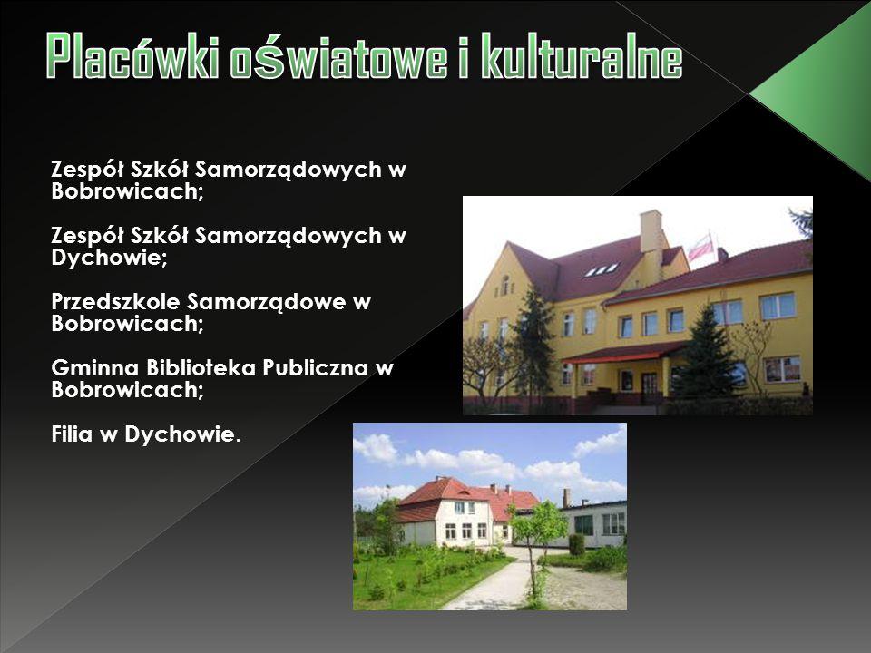 Zespół Szkół Samorządowych w Bobrowicach; Zespół Szkół Samorządowych w Dychowie; Przedszkole Samorządowe w Bobrowicach; Gminna Biblioteka Publiczna w