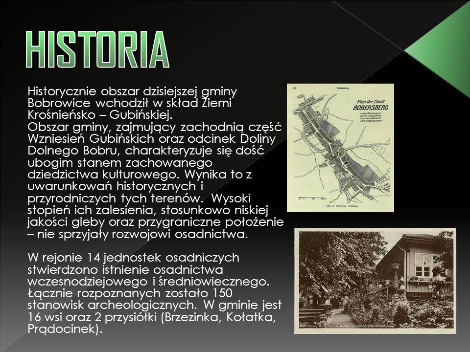 Historycznie obszar dzisiejszej gminy Bobrowice wchodził w skład Ziemi Krośnieńsko – Gubińskiej. Obszar gminy, zajmujący zachodnią część Wzniesień Gub
