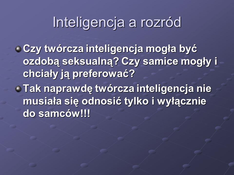 Inteligencja a rozród Czy twórcza inteligencja mogła być ozdobą seksualną? Czy samice mogły i chciały ją preferować? Tak naprawdę twórcza inteligencja