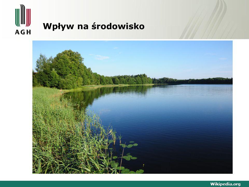 Wpływ na środowisko Wikipedia.org