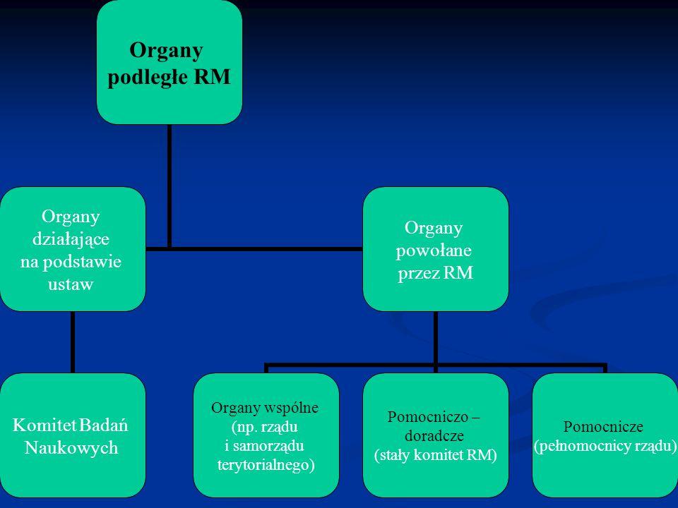 Organy podległe RM Organy działające na podstawie ustaw Komitet Badań Naukowych Organy powołane przez RM Organy wspólne (np. rządu i samorządu terytor