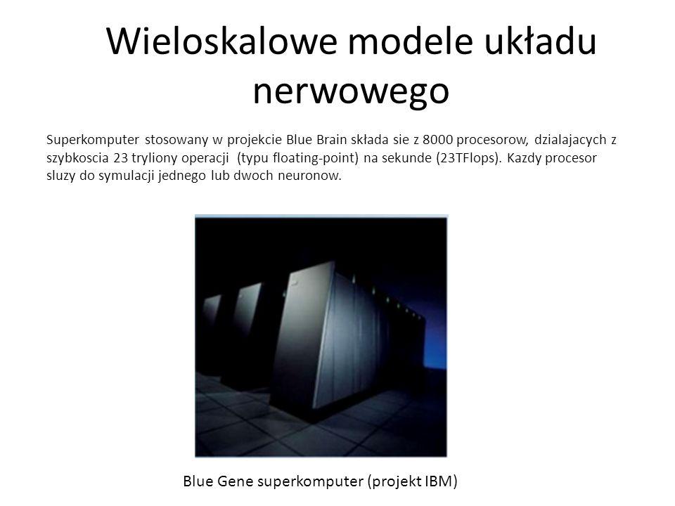 Wieloskalowe modele układu nerwowego Superkomputer stosowany w projekcie Blue Brain składa sie z 8000 procesorow, dzialajacych z szybkoscia 23 trylion